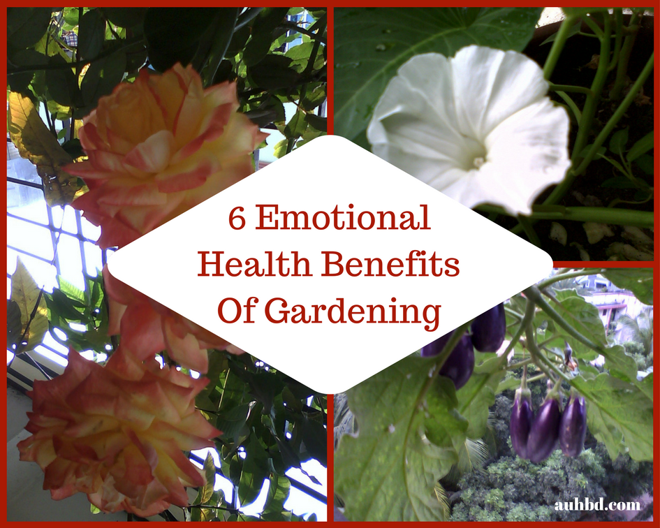 6 Psychological Health Benefits Of Gardening